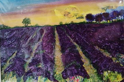 Heacham Lavender - Maxine Byron