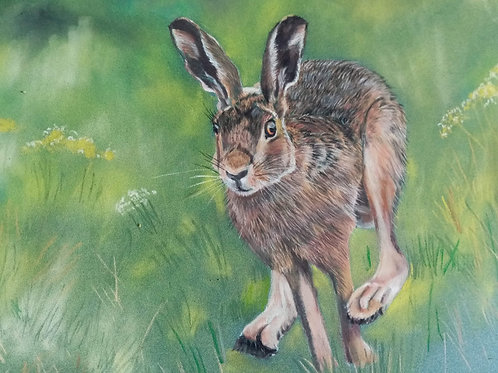 'Galloping Hare' by Lynne Rackstraw