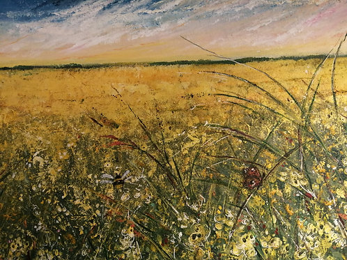 'FIELDS OF GOLD' by Kerry Farr