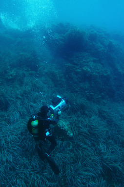 Underwater Housing / Caisson sous-marin
