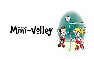 Mini Volleyball.png