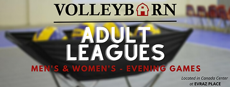 Adult Leagues.png