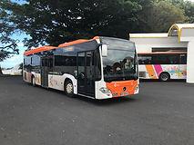 bus Réseau Estival