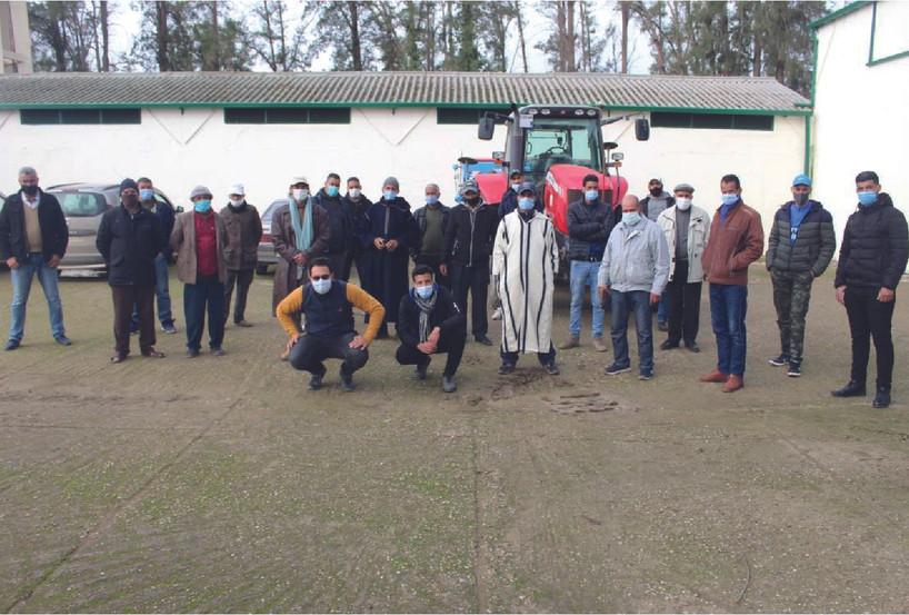 Formation sur la réussite de l'installation et de la fertilisation de la culture du colza (Field days - Oilseed Maghreb)