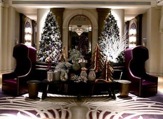 Magic Hour Christmas Shows