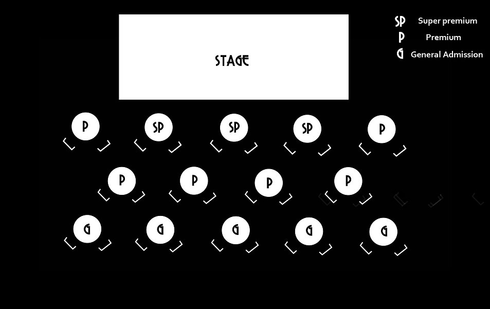 magic shows seating plan V1.jpg