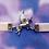Thumbnail: Pegasus Velvet Ribbon Choker