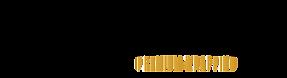 carskin_premium_logo.png