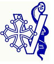 logo cvt.JPG