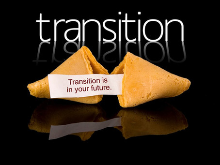 Preserved by Purpose: God's Transition Team
