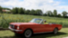 Mustang Cab 1964 1/2