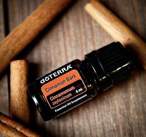 Canela (Cinnamon): Aceite de la Armonía Sexual