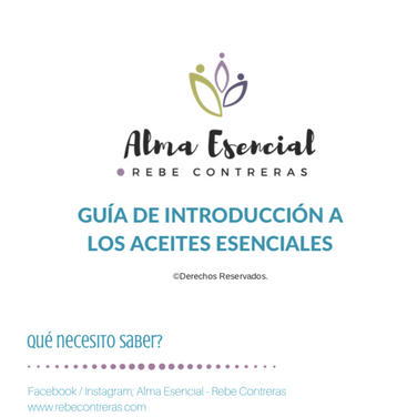 EBOOK Guía Introduccón
