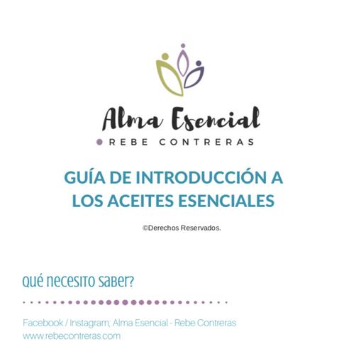 EBOOK Guía Introduccón