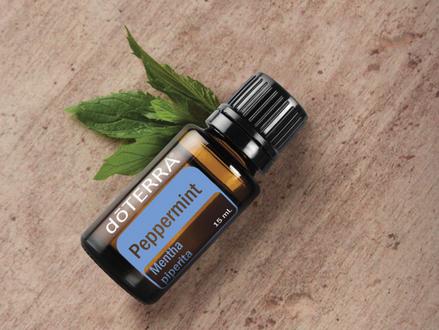 Aceite esencial de Menta (Peppermint)