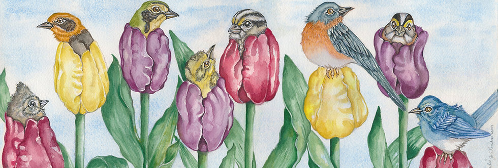 Tulip Birds