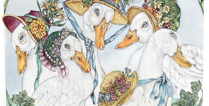 """Elegant Daisys"""
