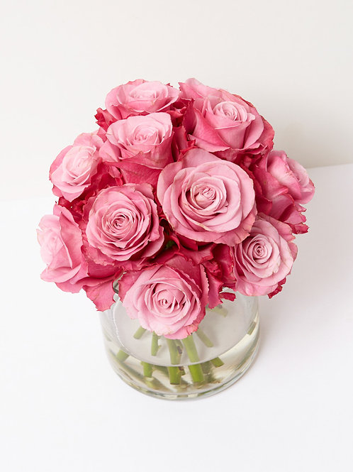 Pink Rose Dome