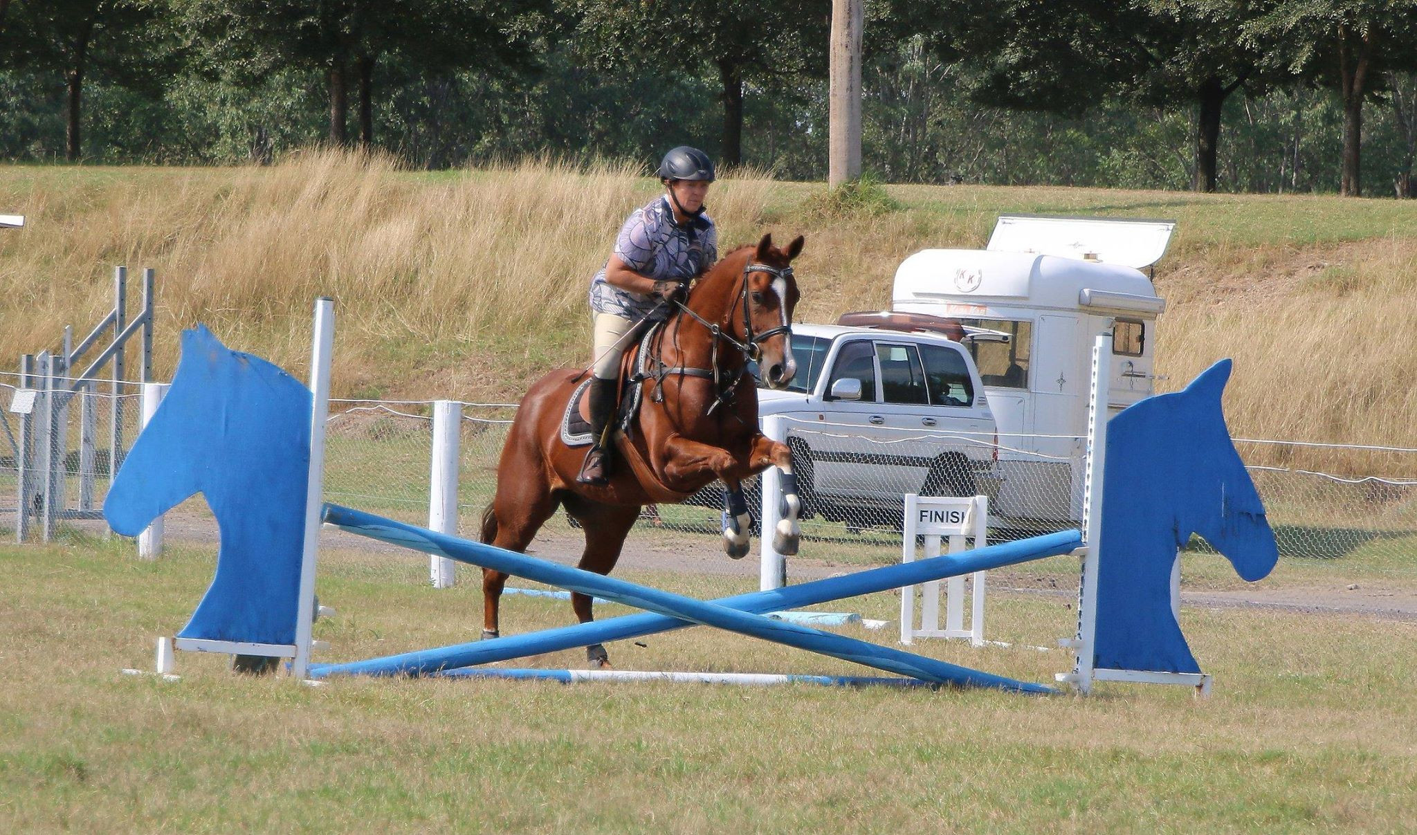MEMBERS ONLY - Show jumping area 4
