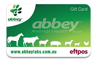 Abbey Eftpos Card-shade.png