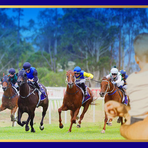 """""""FAMILY HORSE"""" EERISED WINS AT NOWRA"""
