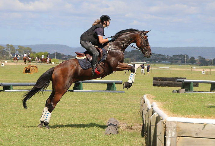 hawkesbury-riding-club-eventing