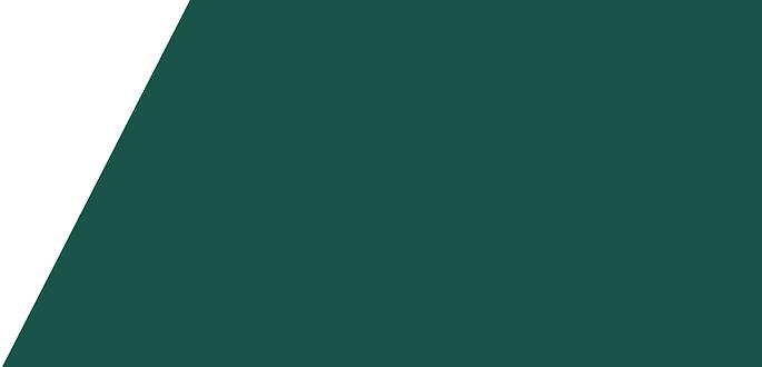 background green dark (1).png