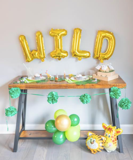 The Go Wild Birthday Package