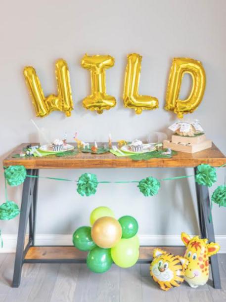 The Go Wild Birthday Party