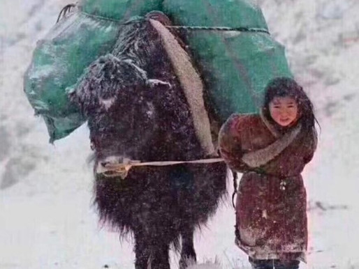 Menschen aus Tibet