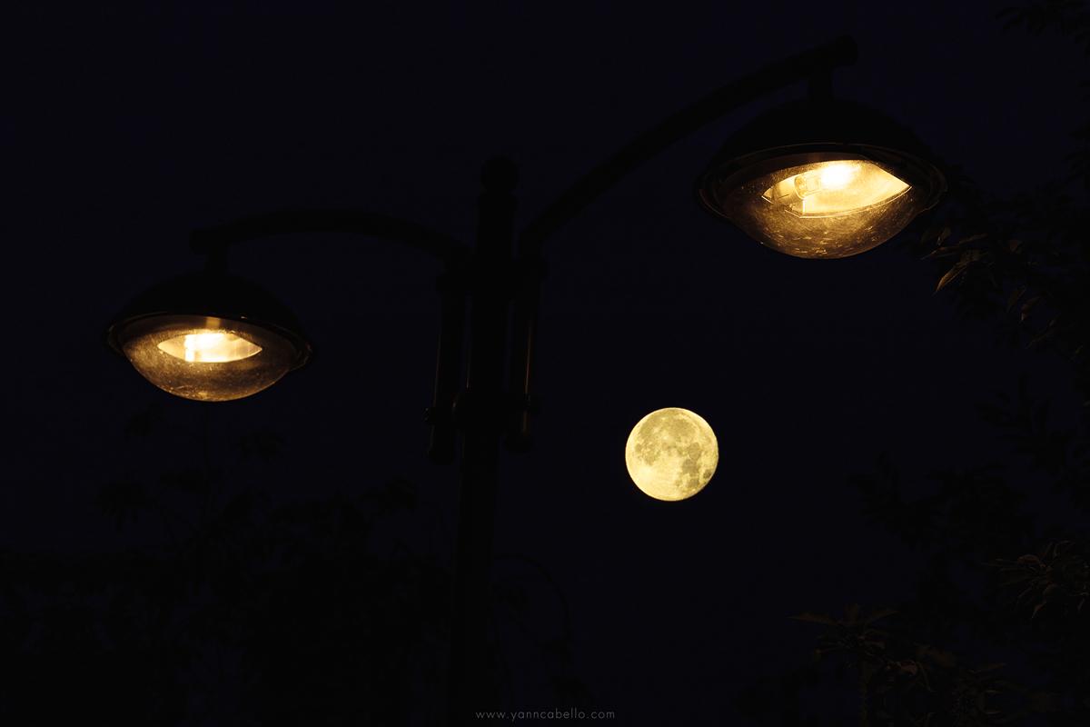 Les lampes nocturnes
