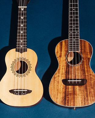 ukulele2020-2048px-0253-2x1-1.jpg