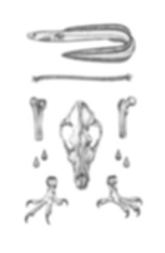 bakverkur+(2).jpg