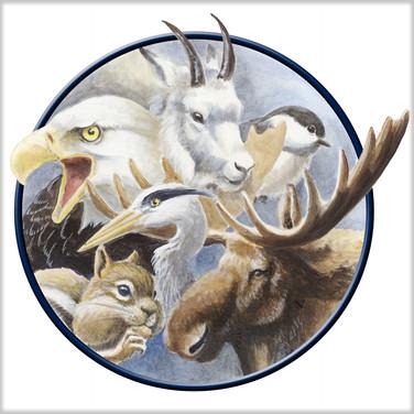 Colorado Parks & Wildlife - Wildlife Diversity