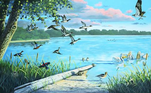 Open Water Mural