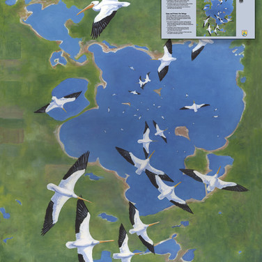 """Chase Lake MWR Visitor Center - """"Swirling Pelicans"""""""