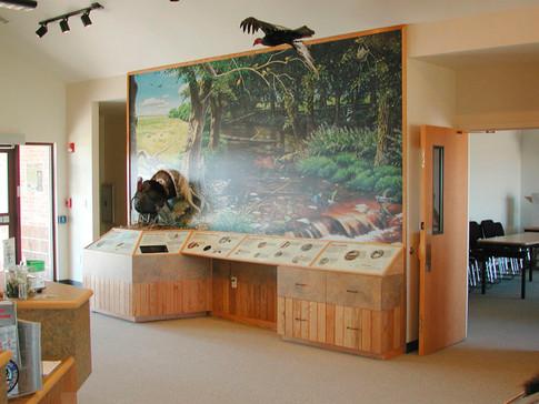 Riparian Exhibit, installed