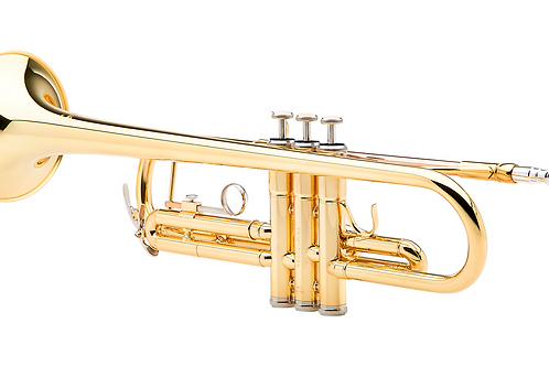 Six Weeks Virtual Group Brass Lessons