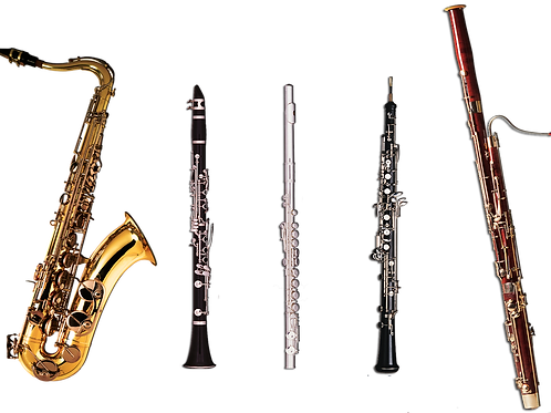 Six Weeks Virtual Group Woodwind Lessons