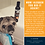 Thumbnail: Revitalize USDA Certified Organic Neem Dog Shampoo