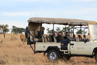 safari-vehicle-game-drives.jpg