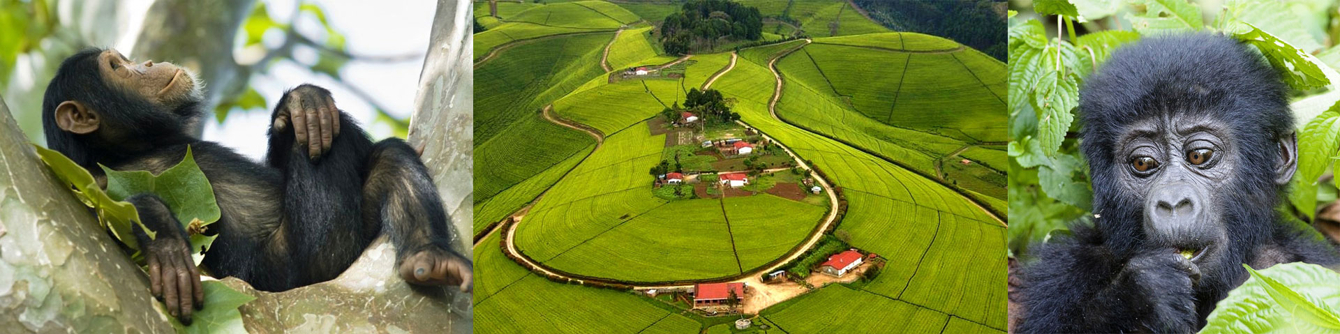 Rwanda Attractions