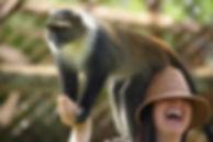 monkey_lady.jpg