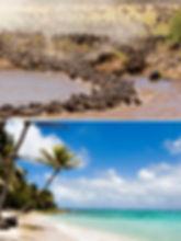 kenya-art-migration-beach.jpg