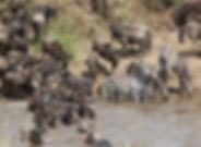 itin-kenya-2.jpg