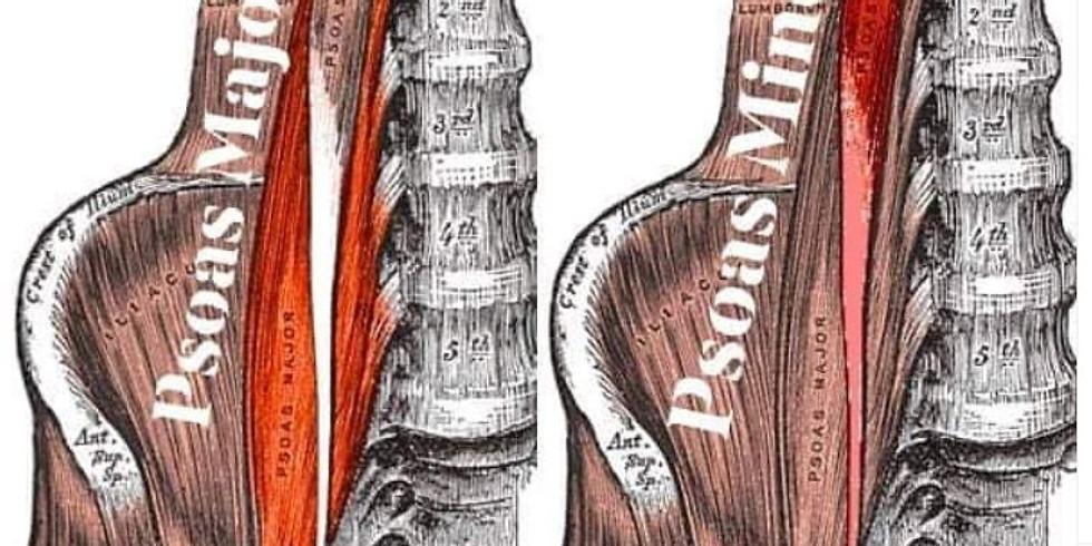 Léčení bederních svalů/OBSAZENO
