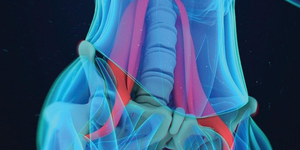 Kurzík léčení bederních svalů - čtvrtek