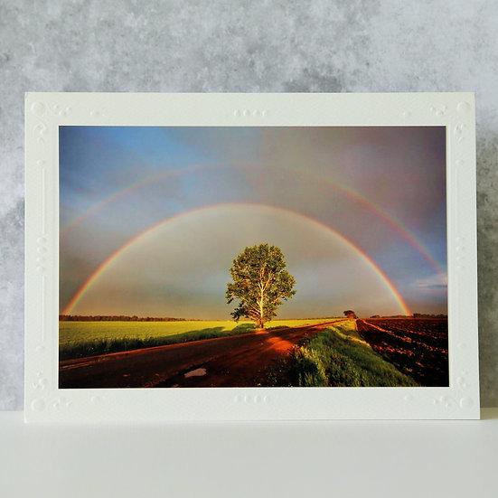 Double Rainbow over Tree