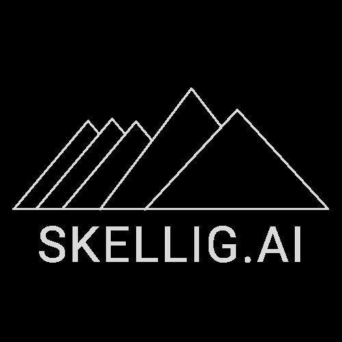 Light Skellig.ai Logo.png