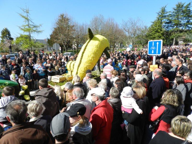 Le dos fin d'avril – Quartier du Moulin de la Juliennais